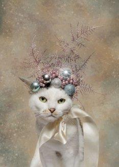 猫狗萌宠圣诞大片