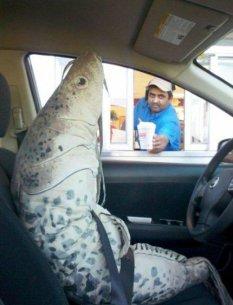 鱼先生,这是你要的可乐