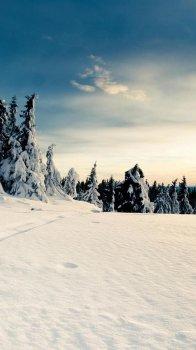 唯美冬季雪景手机壁纸图片