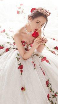 迪丽热巴玫瑰刺绣礼服高贵