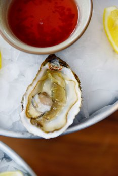 味蕾绽放贝类海鲜美食图片
